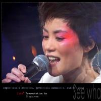 王菲演唱会唱歌技巧 怎么才能唱好王菲的歌曲