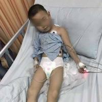 东莞幼儿园保育员涉嫌投毒 十余名幼儿中毒送医治疗