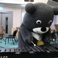 有bear来!熊赞狂练8种乐器 准备登国家音乐厅