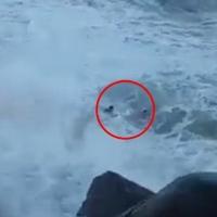 岩礁上自拍 游客遭大浪捲走丧命